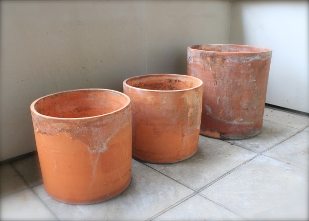Habitat terracotta pots